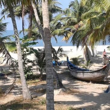 Une chambre d'hôtes au Kerala – Marari-Beach-homestay
