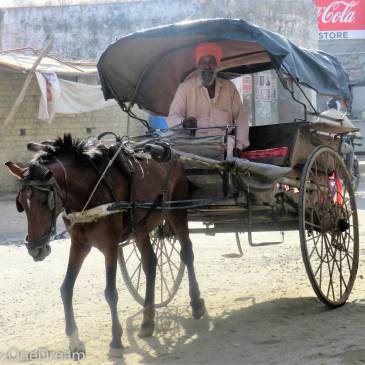 Amritsar, capitale du Pendjab