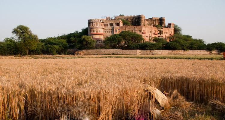 One Day Alwar Local Sightseeing Trip by Car Kesroli Hill Fort
