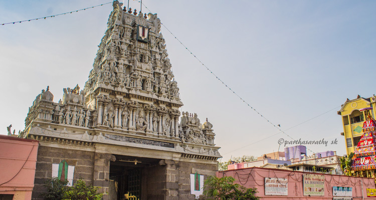 One Day Chennai Local Sightseeing Trip by Car Parthasarathy Temple