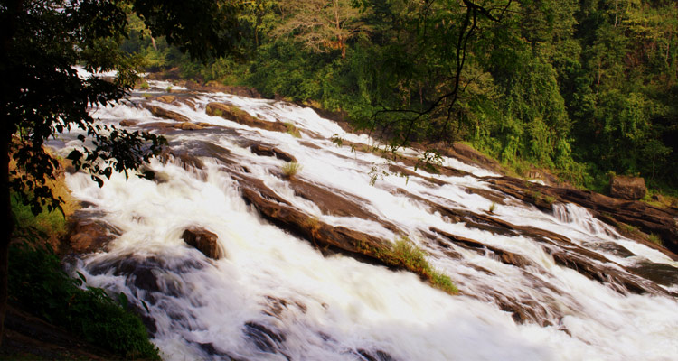 One Day Coimbatore to Malampuzha and Athirappilly Waterfalls Trip Vazhachal Waterfalls