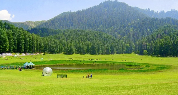 One Day Dalhousie Local Sightseeing Trip by Car Khajjiar