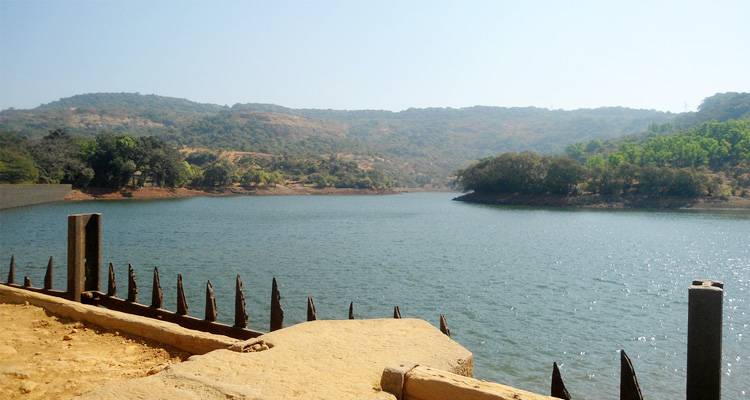 One Day Lonavala Local Sightseeing Trip by Car Bhushi Dam