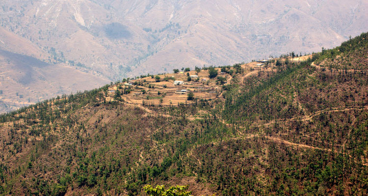 One Day Mussoorie Local Sightseeing Trip by Car Gun Hill