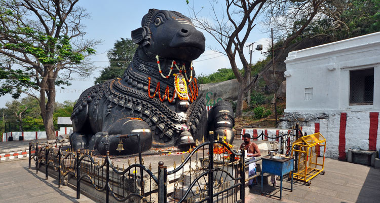 One Day Mysore Local Sightseeing Trip by Car Nandi Statue / Bull Temple