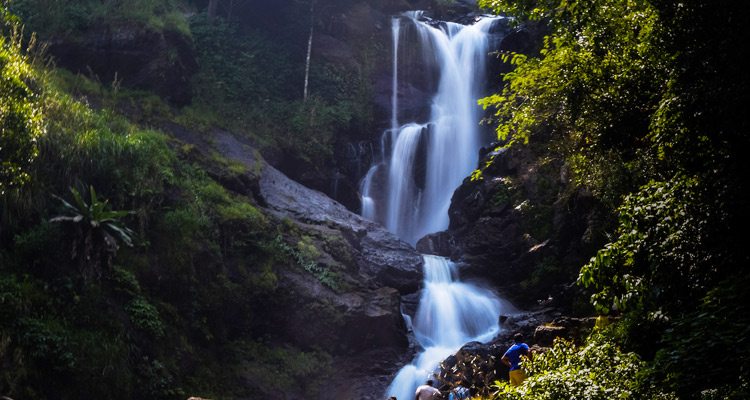 One Day Mysore to Madikeri / Nagarhole Jungle Safari Trip by Car Iruppu Fall