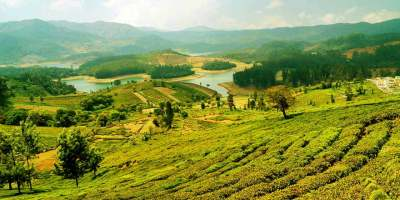 1 Day Mysore to Ooty Tour by Cab