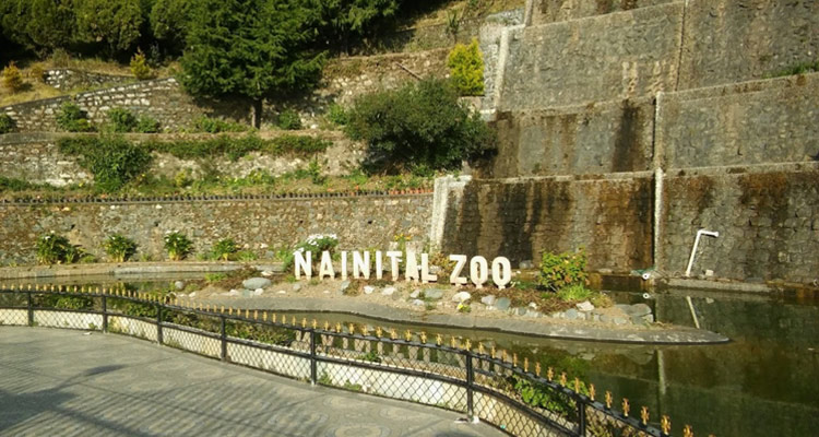 One Day Nainital Local Sightseeing Trip by Car High Altitude Zoo