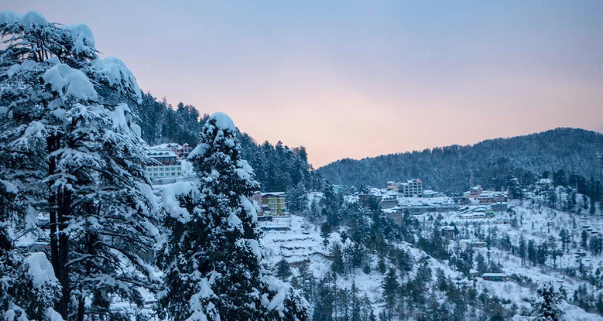 One Day Shimla Local Sightseeing Trip by Car Header
