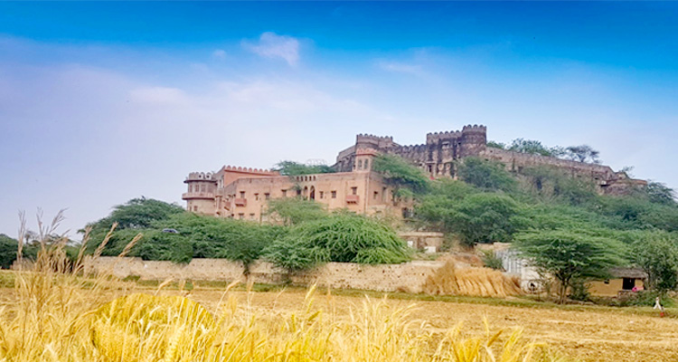 1 Day Alwar Local Sightseeing Tour by Cab Hill Fort Kesroli