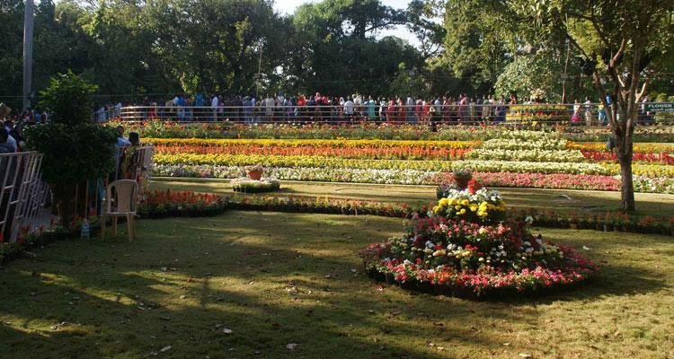 1 Day Chennai to Pondicherry Tour by Cab Botanical Garden