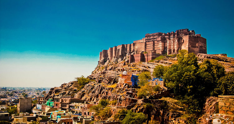 1 Day Jodhpur Local Sightseeing Tour by Car Mehrangarh Fort