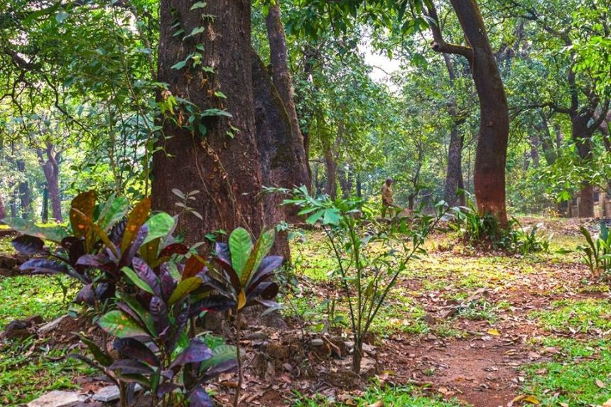 Visit Ryewood Park with 1 Day Lonavala Sightseeing Tour in a Private Car