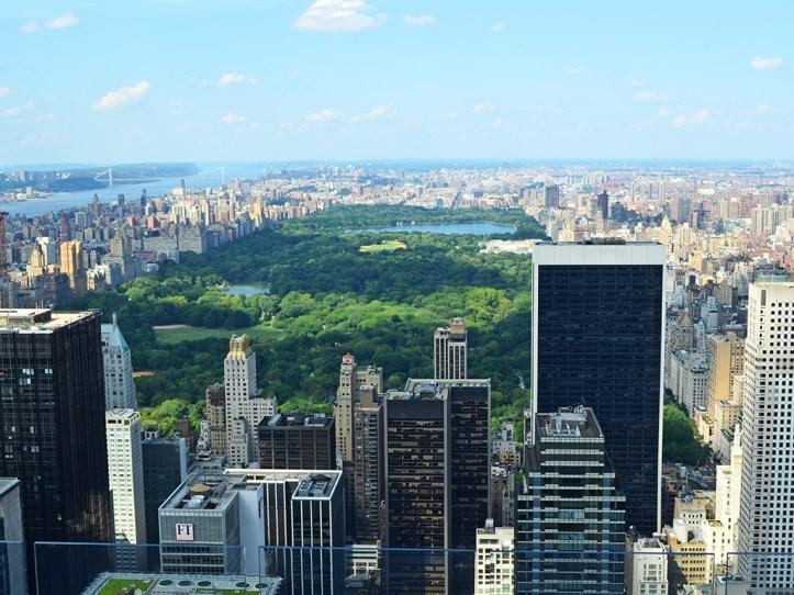 Central Park From Rockeffeler Center
