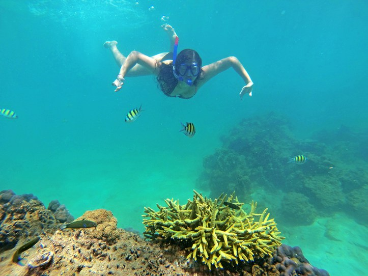 Koh Kradan Snorkeling