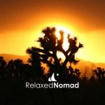 Relaxed Nomad Logo