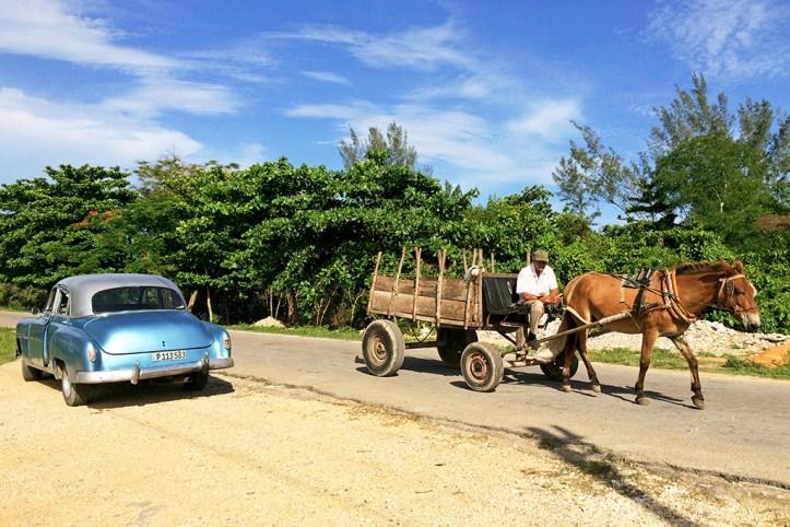 Locals in Playa Larga