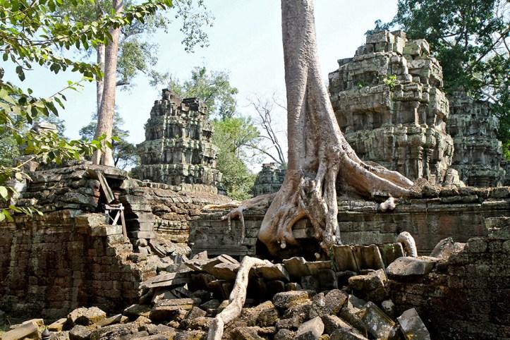 Ta Phrom Angkor Wat, Siem Reap