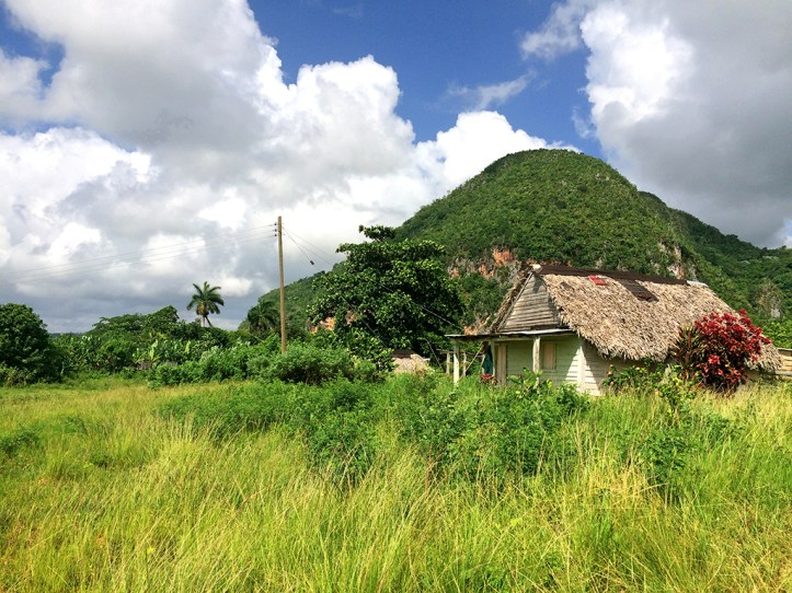Vinales Guided Tour