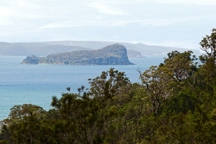 Lion Island and Box Head, Central Coast