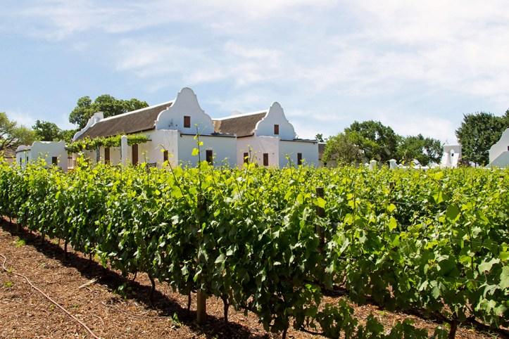 Babylonstoren, Cape Winelands