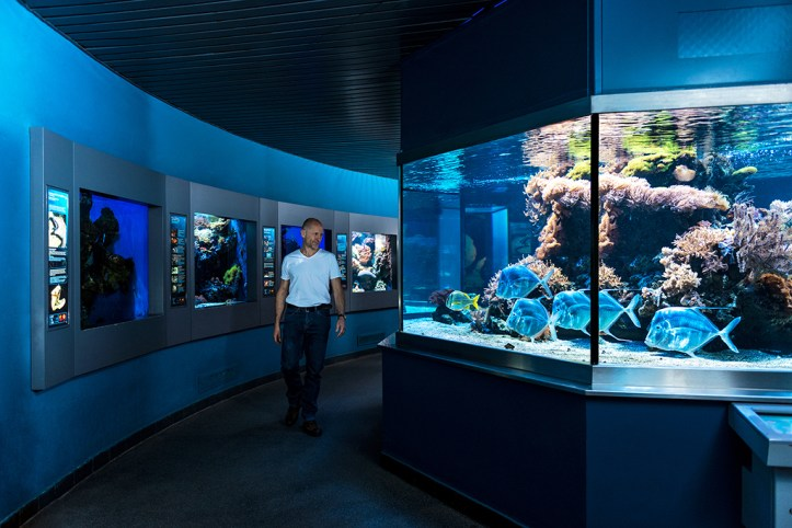 Haus der Natur Aquarium©HdN_Simmerstatter