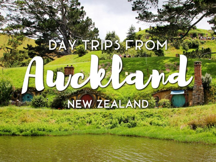 Day Trips from Auckland New Zealand