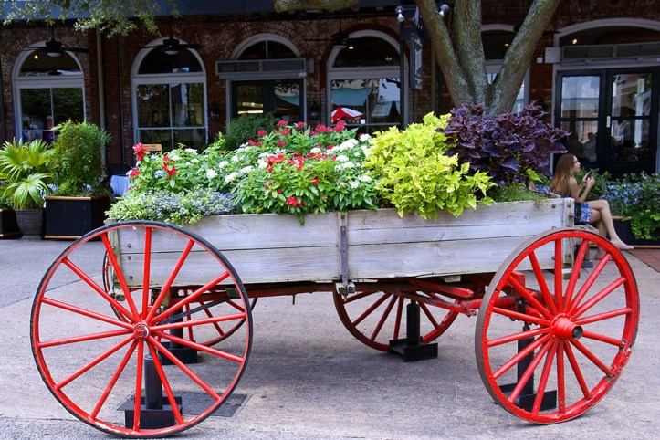 Flowers at the City Market, Savannah