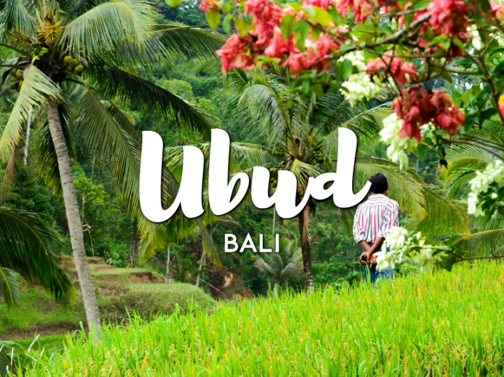One day in Ubud Itinerary