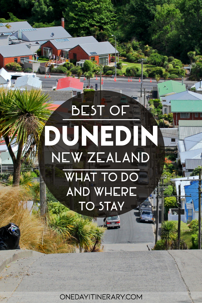 One day in Dunedin