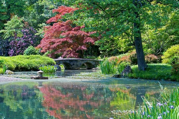 Japanese Garden, Richmond