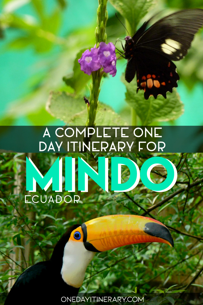 A complete one day itinerary for Mindo, Ecuador