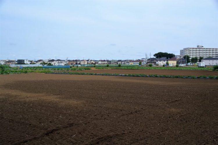 清瀬駅北口に残る畑