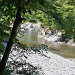 多摩川を見ながら歩く