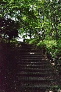 山崎公園の広場へ階段を上る