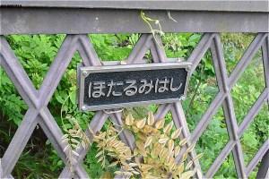 蛍見橋を渡ると、都筑中央公園