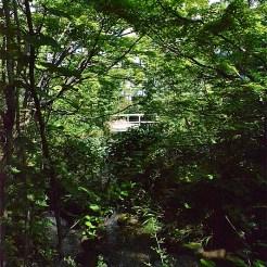 ギャザリアビオガーデン フジクラ木場千年の森
