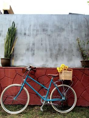 Hipster blue bike