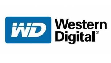 El mundo digital vulnerable. Usuarios NO respaldan su información: WD