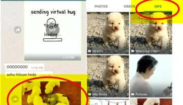 WhatsApp ya permite compartir archivos .GIF