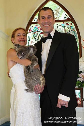 Koala Cuddle with Jeff