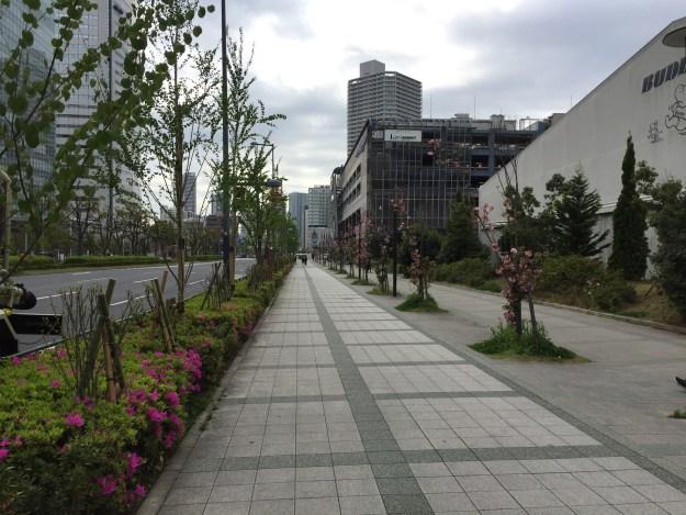 豊洲付近の歩道