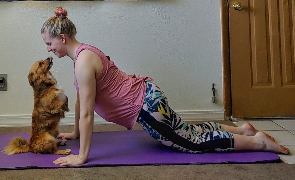 Assisted plank