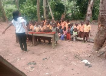 """Pupils of Wurapong M/A Primary School in the Yilo Krobo Municipality of the Eastern region resort to wood logs as chairs to study under trees.  The harsh conditions under which the pupils learn is discouraging parents from enrolling their children of school going age for fear of endangering their lives.  Teachers are compelled to close early when the clouds gather as the school population battle with all kinds of reptiles to acquire knowledge.  Established in 1947 with six-unit pavilion classroom structure built from bricks, Wurapong Primary School has never seen any major renovation. This has affected effective teaching and learning.    The school structure from class one to six is in tatters with dusty floors exposing teachers and pupils to harsh weather conditions and infections.  """"The nature of the school structure is demoralizing teachers anytime they set foot into the classrooms,"""" a teacher told Starr News on condition of anonymity.  The woefully inadequate teaching and learning materials including text books is also a major worry to the teachers.  The school has no computer lab for ICT practicals but writes examination on the subject. Also, it has no office therefore a few teaching and learning materials are kept in a private residence.  Most Teachers in the School commute about three miles to School from Klo -Agogo everyday due to lack of teachers' bungalow.  Currently the school has a population of 141 pupils made up of 80 Boys and 61 Girls.  The Education Directorate in the region is yet to respond to calls to give the school a facelift."""