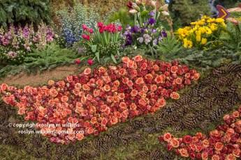 rose-parade-floats-010216-007-C-700px