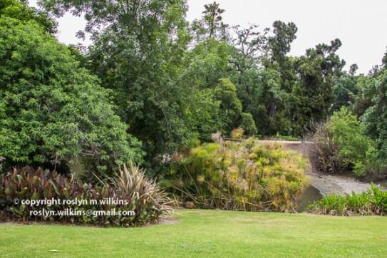 arboretum-051416-156-C-600px