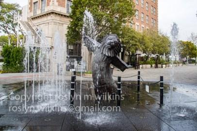 photo-walk-talk-011817-101-c-500px