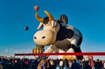 balloon-festival-2003-033-C-500px