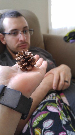 Japanese pine cone. Hubby was not as excited. :(