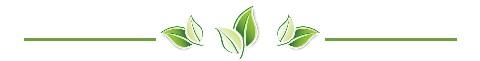 leaf dividere
